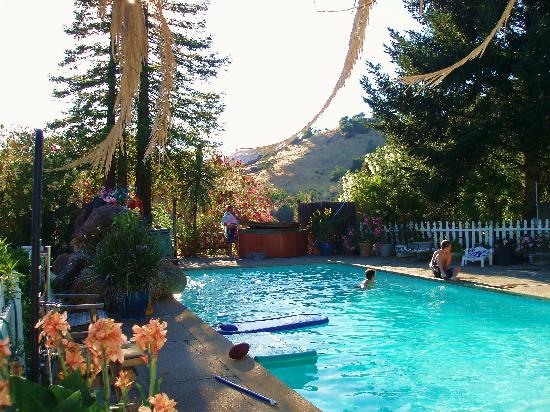 Hillcrest Bed & Breakfast: The Pool