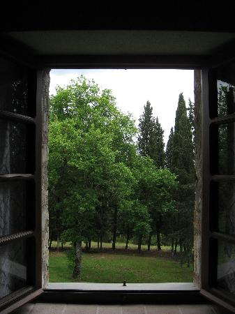 Casale San Lorenzo: view from window in our bedroom