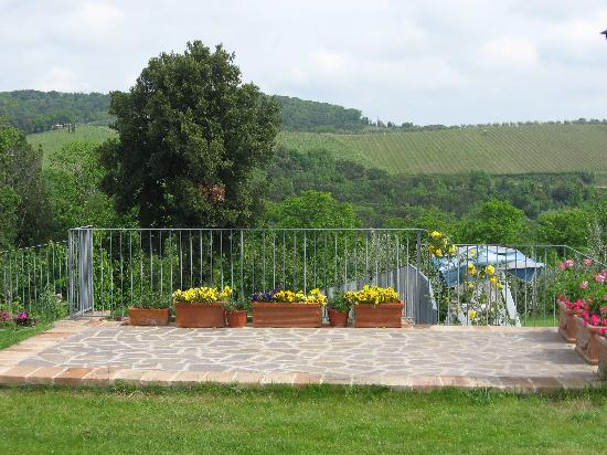 Casale San Lorenzo: vineyard view from pool