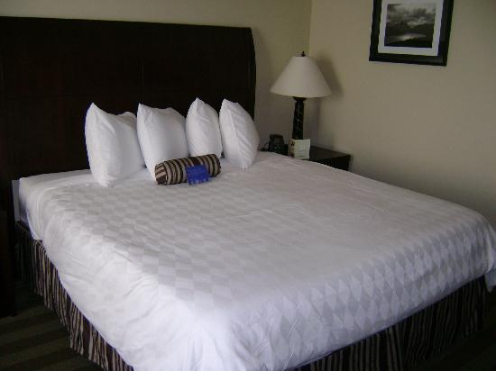 Hilton Garden Inn Kalispell: Comfy & Clean Bed