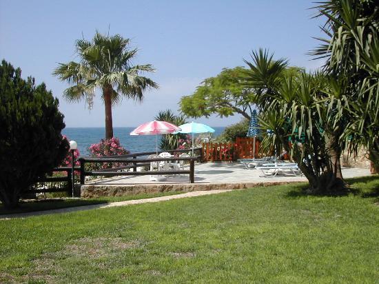 写真Rododafni Beach Holiday Apartments & Villas枚