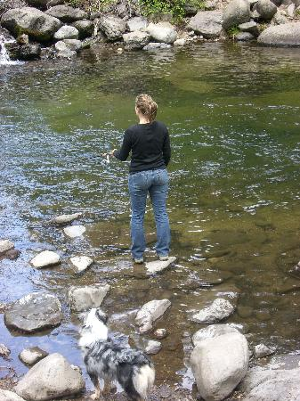 Elam Campground : My wife fishing - hike up the creek for more pools where native fish are, German Browns, Brookie