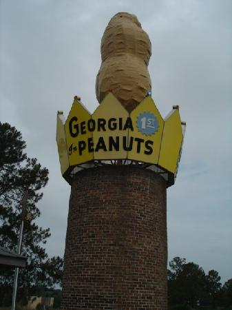 World's Largest Peanut : Here it is in all its glory