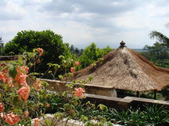 Amanjiwo Resorts: view from one of our terraces