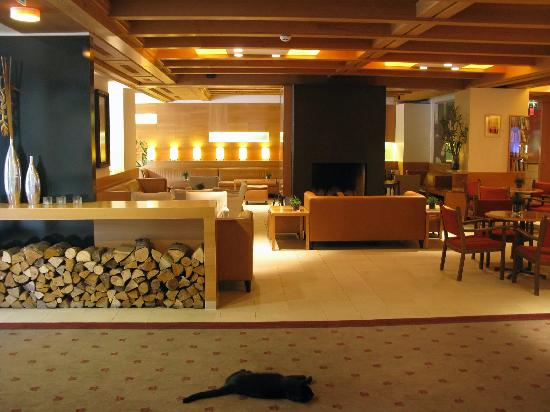 Theresia Gartenhotel: Lobby area with Peter (hotel cat).