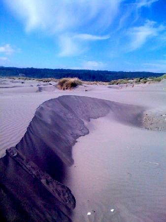 Arcata, Californien: Clam beach Sand Dune and mountains