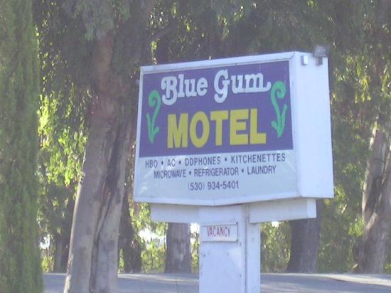 Blue Gum Motel: The sign along Old Hwy 99