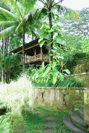 COMO Shambhala Estate : our villa