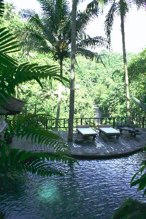 COMO Shambhala Estate: natural pool