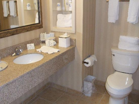 Holiday Inn Express Tehachapi Hwy 58 / Mill Street: Blick ins Bad