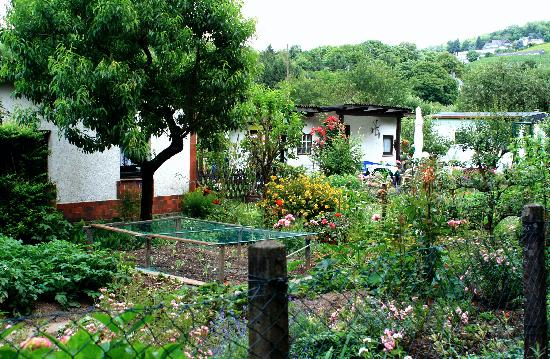 Hotel Villa Hugel: allotments in the Kleingartnerverein, Trier