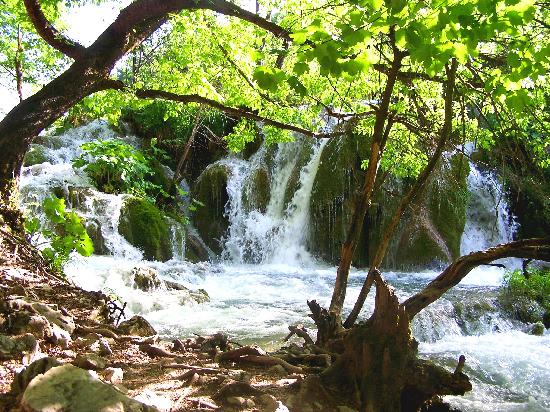 Plitvice Hotel : A waterfull at Plitvice