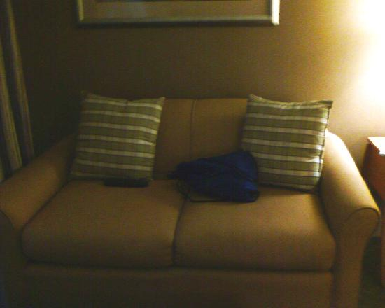 Four Points by Sheraton Plainview Long Island: couch
