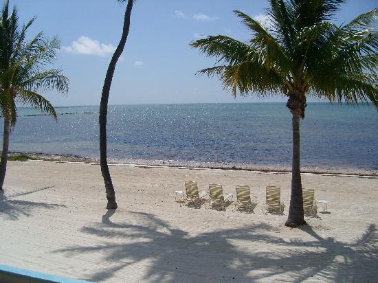 Matecumbe Resort : Nice man-made beach with tide in