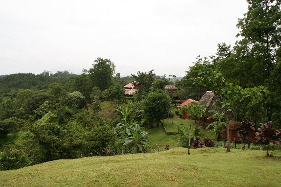 Burbayar Lodge: House and cabins