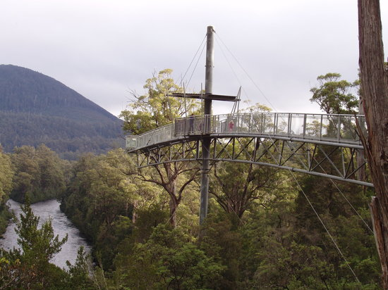 Tahune Forest AirWalk: View of the Cantilever, at the end of the Air Walk