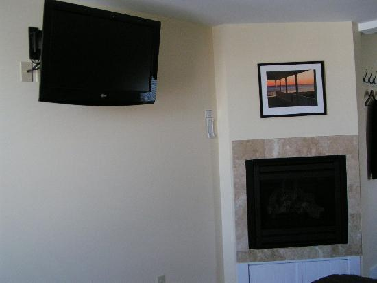 Lotus Guest House: tv and fireplace
