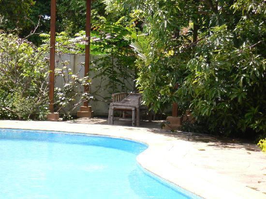 Bahowo Lodge : The Pool