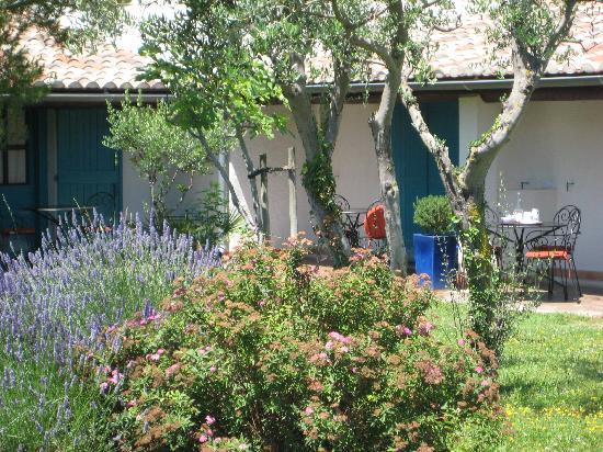Port Camargue, France : jardin