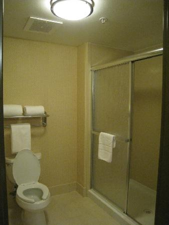 Homewood Suites by Hilton Fresno: clean spotless bathroom