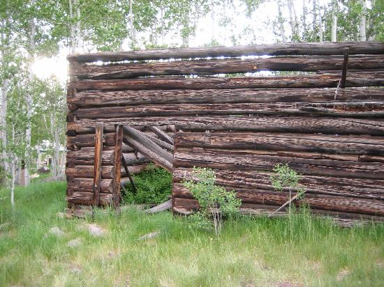 Sylvan Lake State Park Campground: Old cabins on site