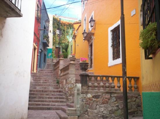El Zopilote Mojado: Stairs leading up to the hotel- so colorful!