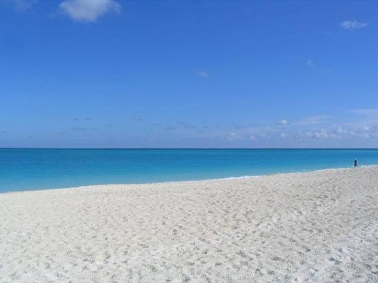 The Tuscany: Beach on Grace Bay