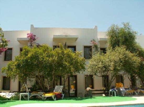 Club Hotel Flora : Chambres en face de la piscine