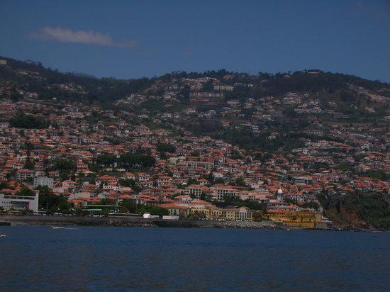 Madeira Islands, Portugal: Immagine da imbarcazione