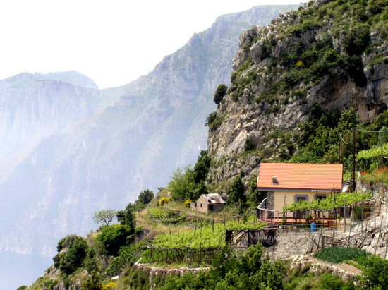 Agerola, Ιταλία: farmhouse and vineyard along the Path of the Gods