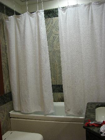Dock Suites Hotel: Baño
