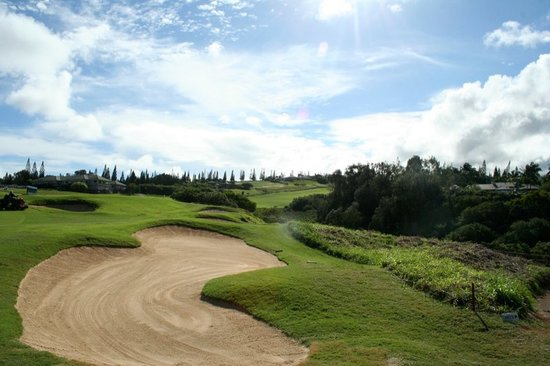 Капалуа, Гавайи: another shot of Kapalua Plantation Course