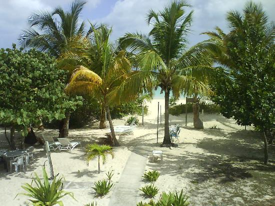 Villa Flamenco Beach: View From House