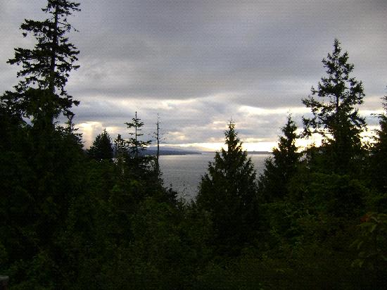 Eagle Landing Bed and Breakfast: view of Georgia Strait from B&B at sunset