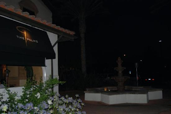 The Palms: At night