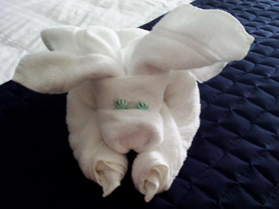 Holiday Inn Manassas - Battlefield: A nice towel presentation