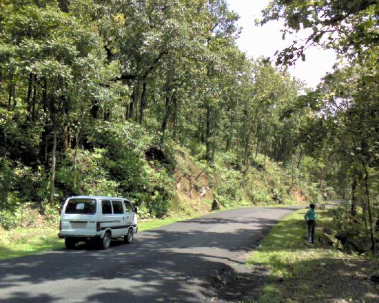Madhya Pradesh, Indie: The way to amarkantak