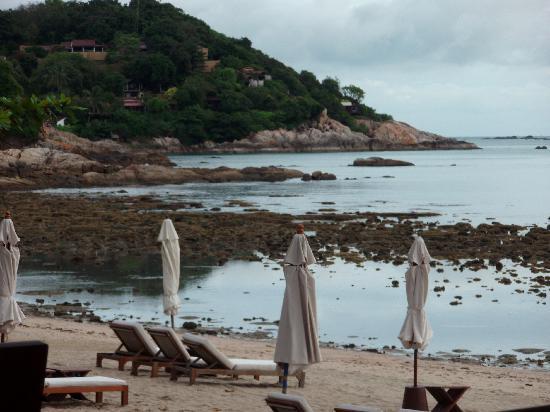 SALA Samui Choengmon Beach Resort: the beach low tide