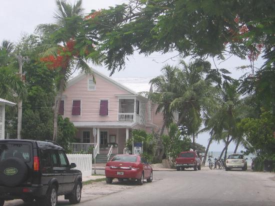 Backyard - Picture of Louie's Backyard, Key West - Tripadvisor