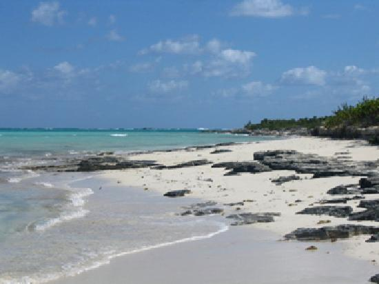 Providenciales: Part of the beach we stopped for snacks