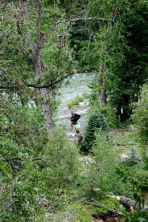 River picture of soaring tree top adventures durango tripadvisor