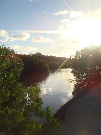 Noumea, New Caledonia: Tibijou Cultural Centre - the totem walk