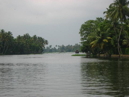 Alappuzha, India: Backwaters again