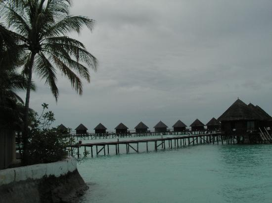 Thulhagiri Island Resort: Beach bungalows