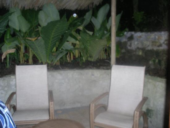 Arenas del Mar Beachfront & Rainforest Resort: Rainforest Suite Patio