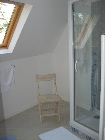 Domaine de la Chapelle : the bathroom