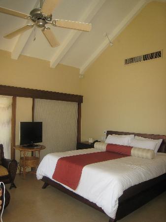 Amorita Resort: ocean villa king bed