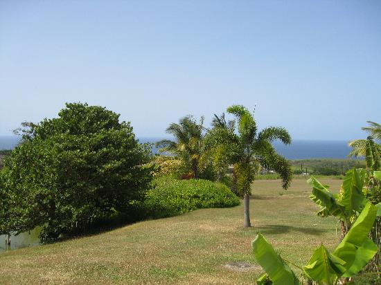 Ottley's Plantation Inn: view from our deck