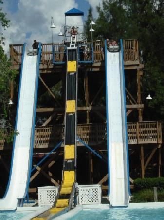 Slides For Everyone Picture Of Adventure Island Tampa