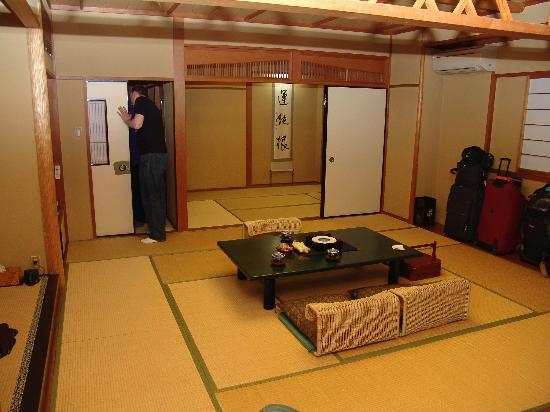 Hotel Senkei: Vue chambre